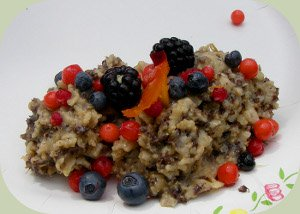 wild edible berries dish