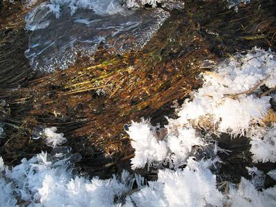 partially frozen creek