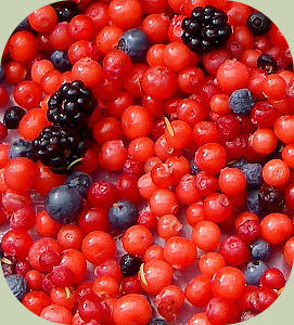 wild edible berries mix