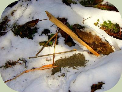 figure four deadfall trap
