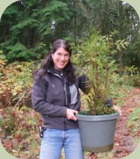 forest stewardship course photo cedar sapling