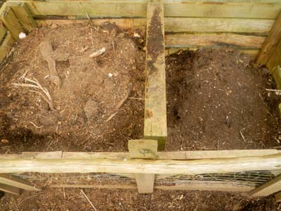 close-up of composting process