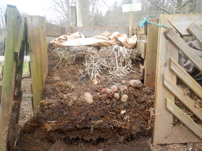 homemade compost bin opened to show layers