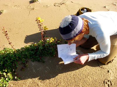 student studying plant identification