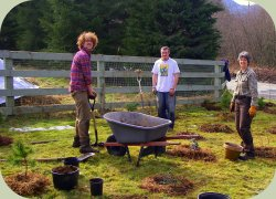 permaculture summer semester photo