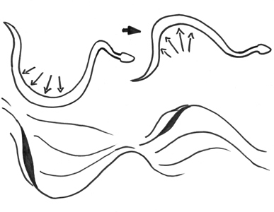 snake tracks slide pushing
