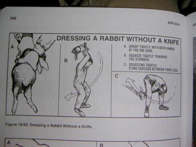 pages showing how to dress a rabbit