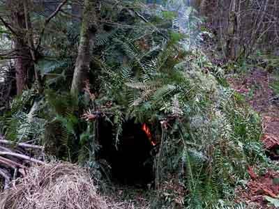 a fire-warmed survival shetler