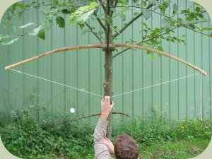 bow making instructions - tillering