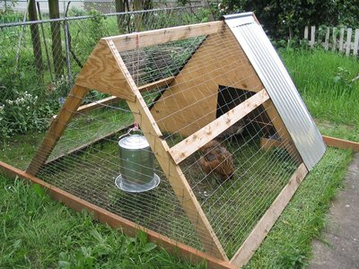 completed chicken tractor