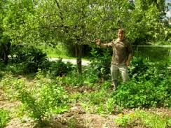Jason Knight in the food forest