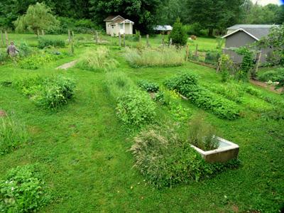 garden at Alderleaf