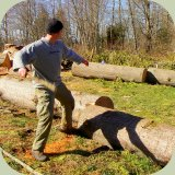 survival weapon throwing stick