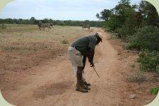 trackinginafrica