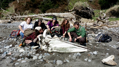 students with gray whale skull