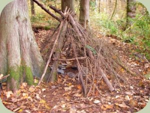 building a wilderness survival shelter